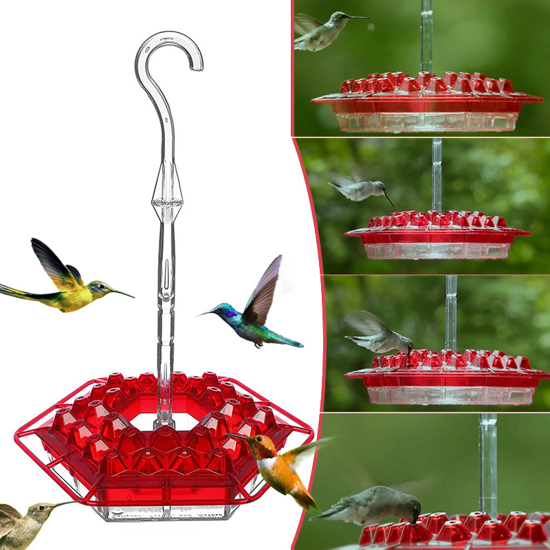 Hummingbird Dish Feeder